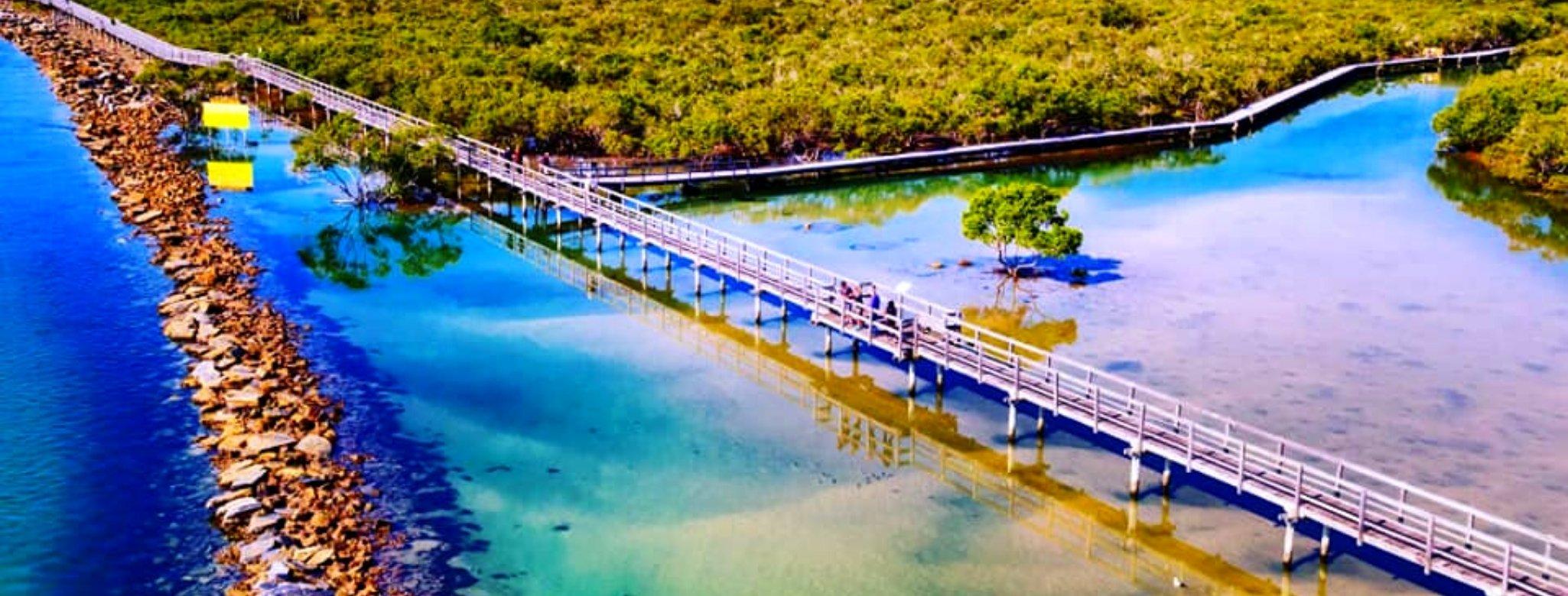 Urunga Boardwalk, Bellingen Shire, New South Wales