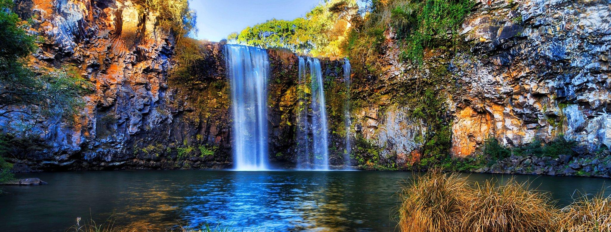 Dangar Falls, Dorrigo, Bellingen Shire, New South Wales