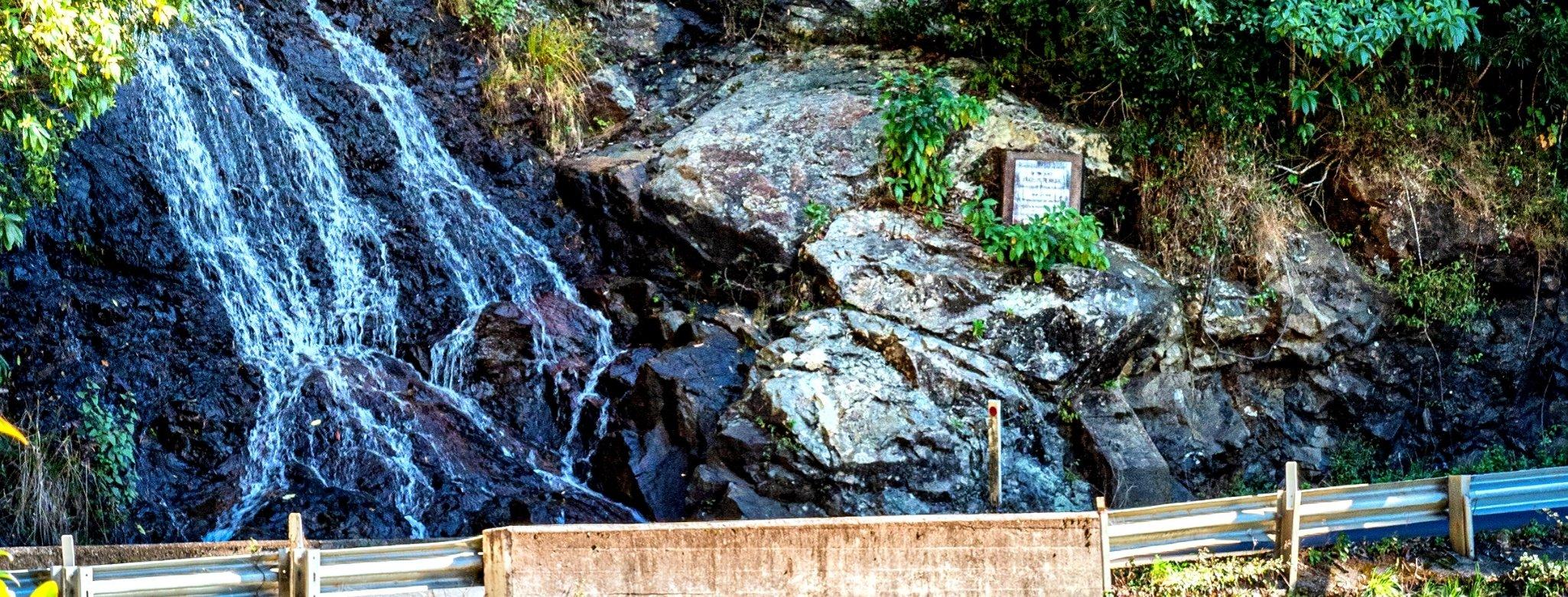 Waterfall Way, Dorrigo National Park, New South Wales