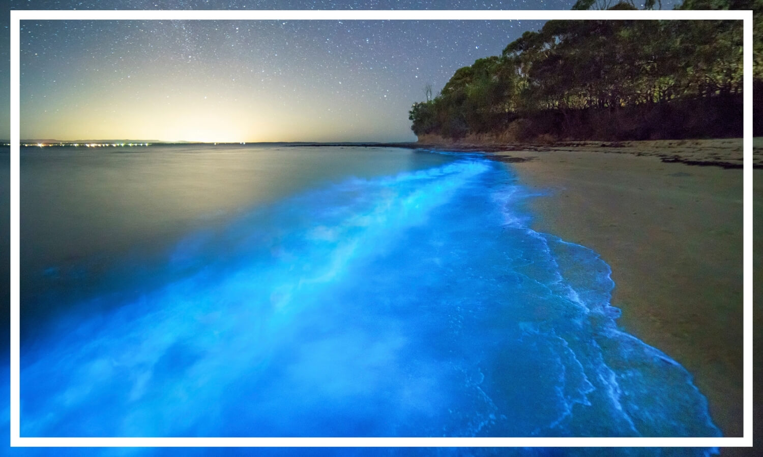 Bioluminescent algae seen at Plantation Point, Vincentia in Jervis Bay by Destination NSW