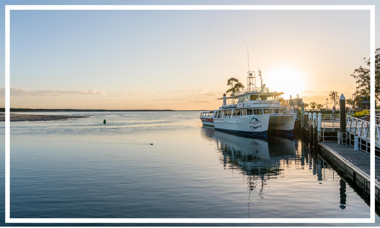 Dolphin Watch Cruises, Jervis Bay by Somethingswild; Destination NSW