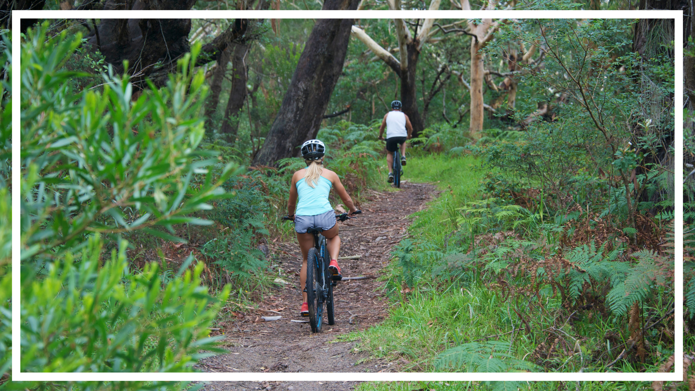 Cycling, Tomaree National Park, Port Stephens by Destination NSW
