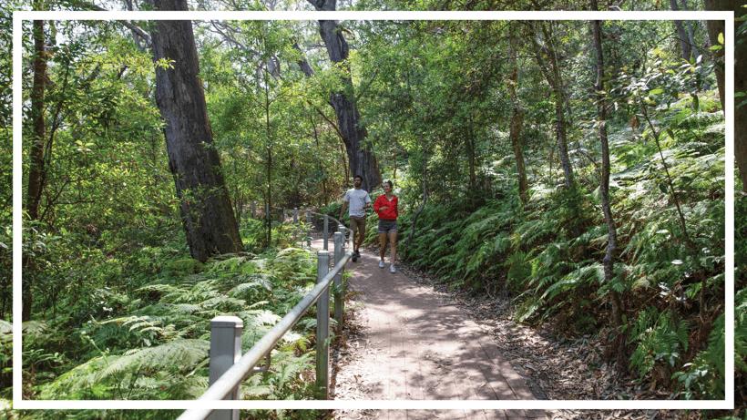 Tomaree Summit Walk, Port Stephens by Destination NSW